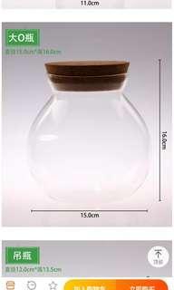 Terrarium glass holder with light