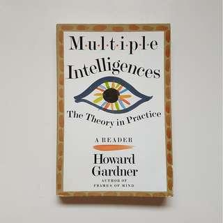 MULTIPLE INTELLIGENCES:  THE THEORY IN PRACTICE