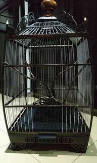 Jambul Gaya Cage