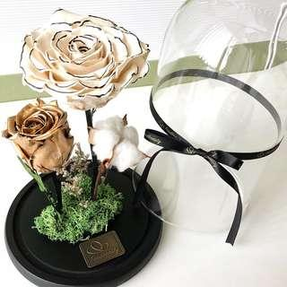 preserved flower dome japan | Flowers & Bouquets | Carousell Singapore