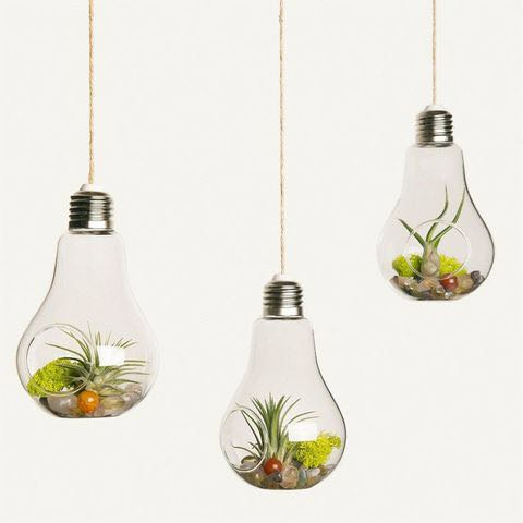Hanging Glass Terrarium Light Bulb Shape Gardening Gardening Tools