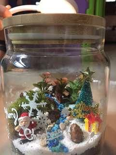 Terrarium Christmas gift