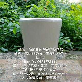 簡約白色陶瓷圓型花盆,特價500元
