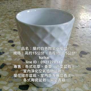 簡約白色陶瓷小花盆,特價150元