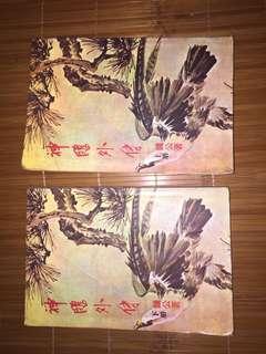 武俠小說 - 神鵰外傳 (又名射鵰英雄傳前傳)