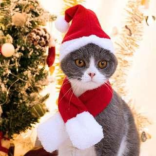 Dogs Cats Christmas Scarf Hat Cape