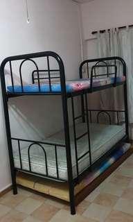 🚚 Double Decker Bed