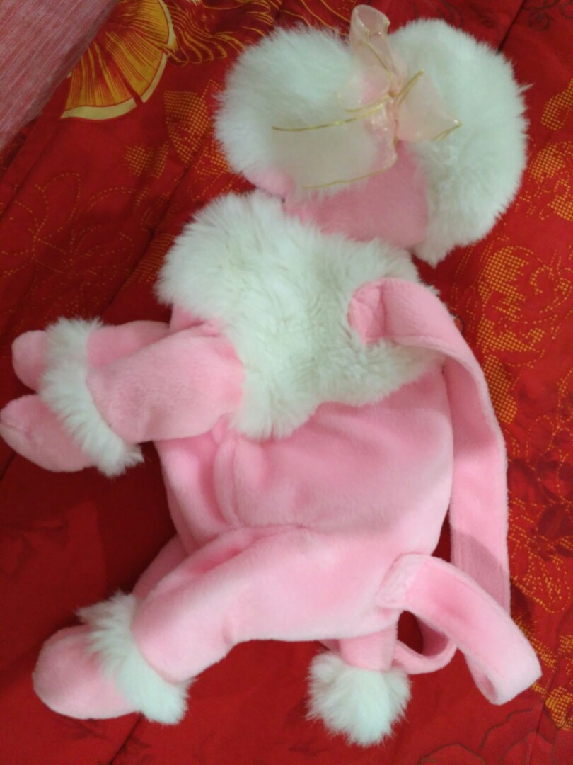 26++ Anjing pudel pink terupdate