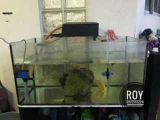 Aquarium/akuarium 2.5feet