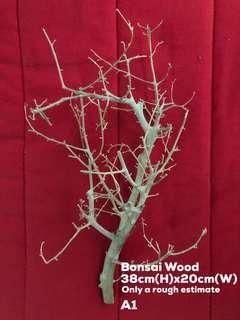 Bonsai Wood for Sale A3