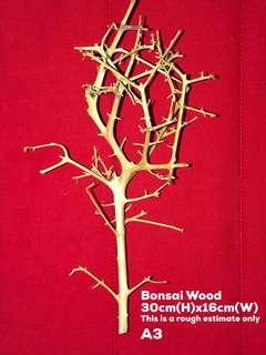 Bonsai Wood A3