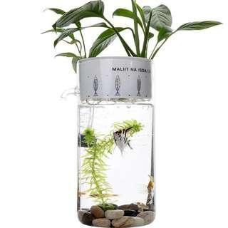 USB盆栽魚缸