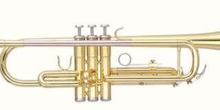 Bulcario Turroni Bb Trumpet BTTR-235L