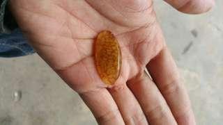 Batu sisik naga