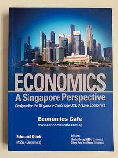 Economics 'A' Level Guide Book