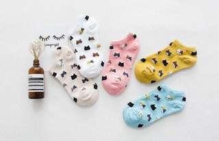 Korean Ankle Socks (5pcs.)