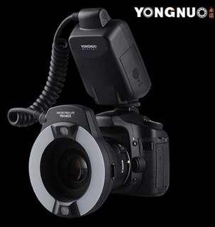 永諾 YN 14 EX 微距閃光燈