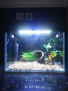 Aquarium fullset 40