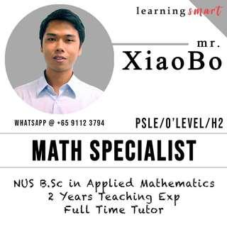 Math Home Tuition Primary PSLE O level IGCSE IB further math add math