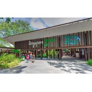 Singapore Zoo with Tram