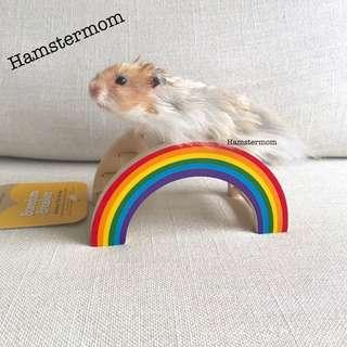 Rosewood Hamster Rainbow Wooden Bridge Boredom Breaker