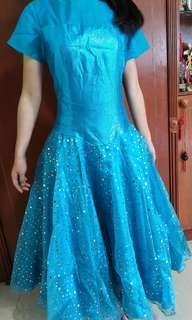 Blue Princess  Gown (Adult)