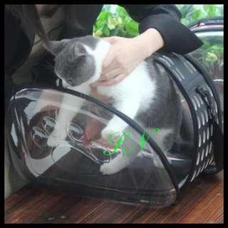 Transparent Pet Carrier Cat Carrier Large Size Rabbit, Chinchila,  Birds, Poppy and Kitten
