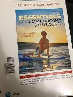 Essentials of Human Anatomy & Physiology, Books À La Carte