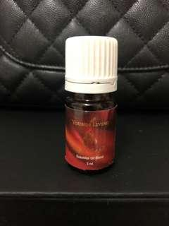 Young Living Light the Fire 5ml Essential Oil