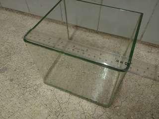 中小形魚缸 fish tank