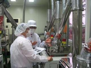 食品工廠包裝員/Food factory packer