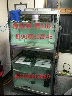 魚缸升級,便宜出售三尺系統魚缸,中和區一樓自取