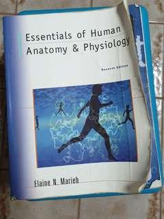 Essentials of Human Anatomy & Physiology Seventh Ed