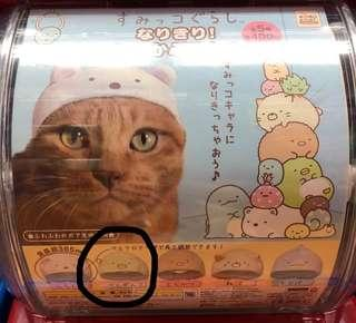 Sumikko Gurashi Cat Hat (Green Penguin)