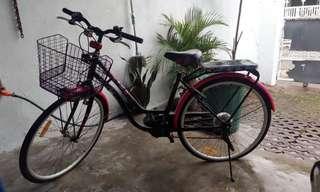 Sepeda Dewasa Baru