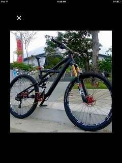 specialized Enduro EVO 2012