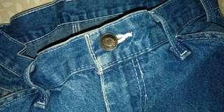 Dickies Jeans Pants