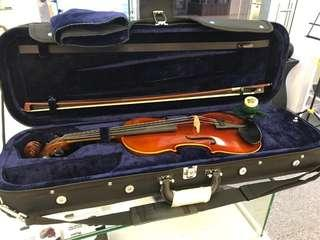 Violin lessons for young adults