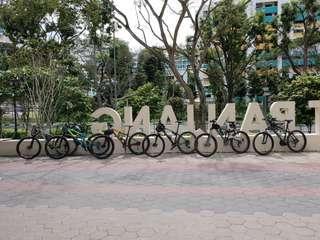 Cycling Group Mtb