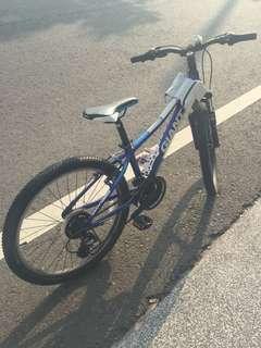 Giant 中型腳踏車