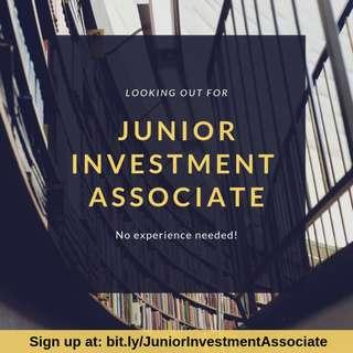 Junior Investment Associate