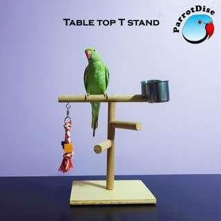 Parrot bird Table top T stand