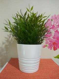 Pot ikea dan tanaman