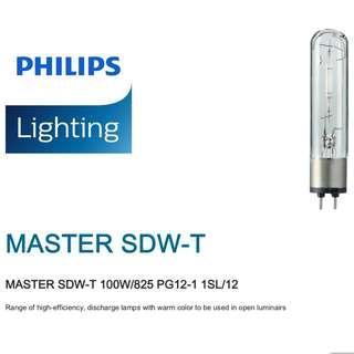 飛利浦 SDW-T 微型氣體放電燈