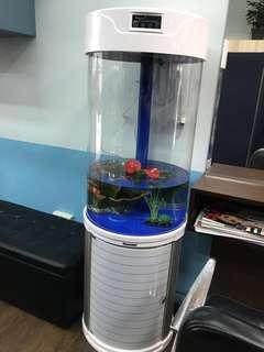 Hailiy fish tank
