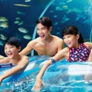 Adventure Cove Waterpark Adult Tickets