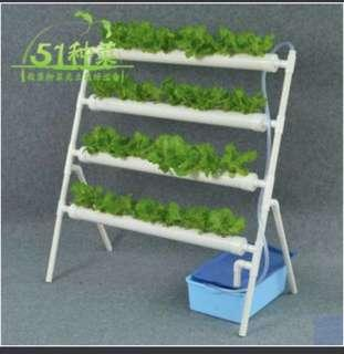 Hydroponics ladder system pvc pipe DIY indoor outdoor
