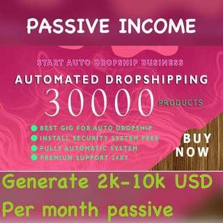 Passive income through fully Automated Dropshipping website(30000 products)