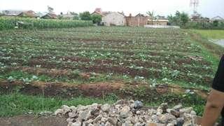 Jual Tanah kavling cocok untuk tempat tinggal.dan investasi