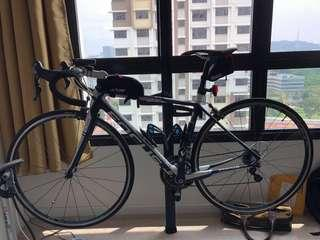 Reduced - Focus Cayo Evo 4.0 road racing bike bicycle